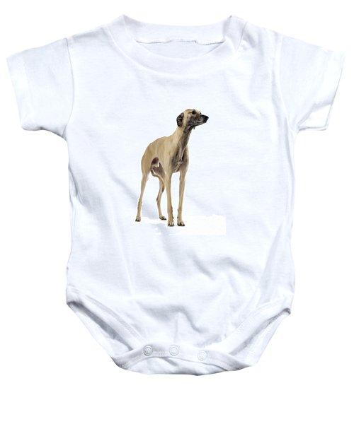 Saluki Dog Baby Onesie