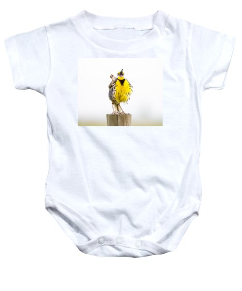 Singing Meadowlark 2 Of 3 Baby Onesie by Bill Swindaman
