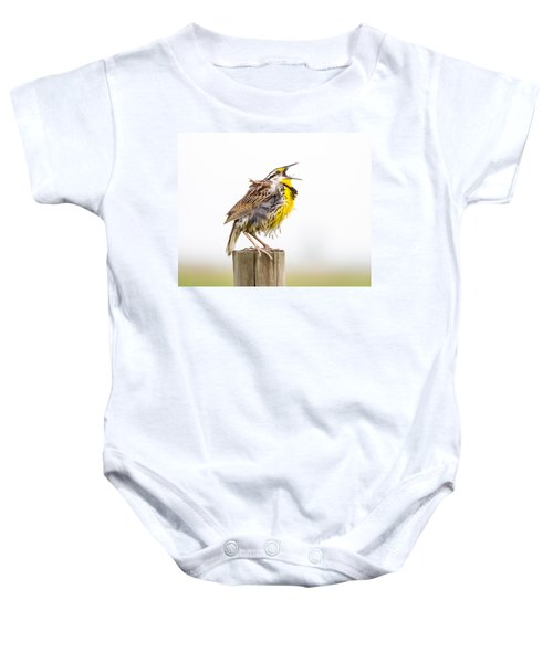 Singing Meadowlark 3rd Of 3 Baby Onesie by Bill Swindaman
