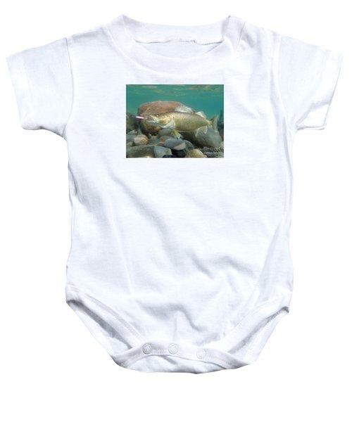 Walleye Baby Onesies | Fine Art America