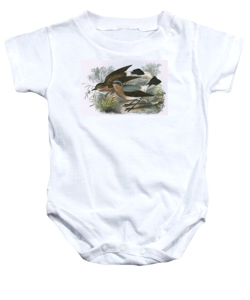 Wheatear Baby Onesie by English School