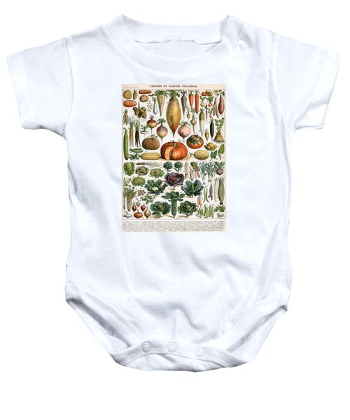 Illustration Of Vegetable Varieties Baby Onesie by Alillot