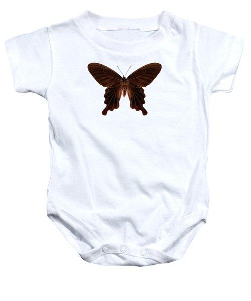 Butterfly Species Atrophaneura Aristolochiae Kotzebuea  Baby Onesie