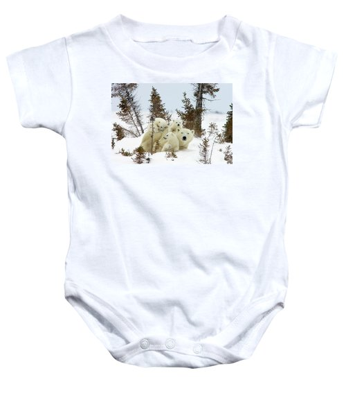 Polar Bear Ursus Maritimus Trio Baby Onesie