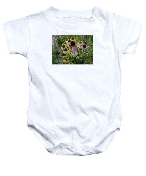 2015 Summer At The Garden Coneflowers Baby Onesie