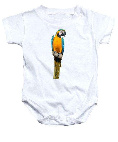 Blue And Gold Macaw Baby Onesie by George Atsametakis