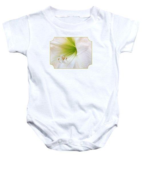Alluring Amaryllis Baby Onesie by Gill Billington