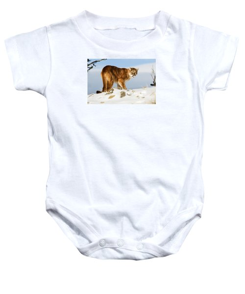 Angry Mountain Lion Baby Onesie