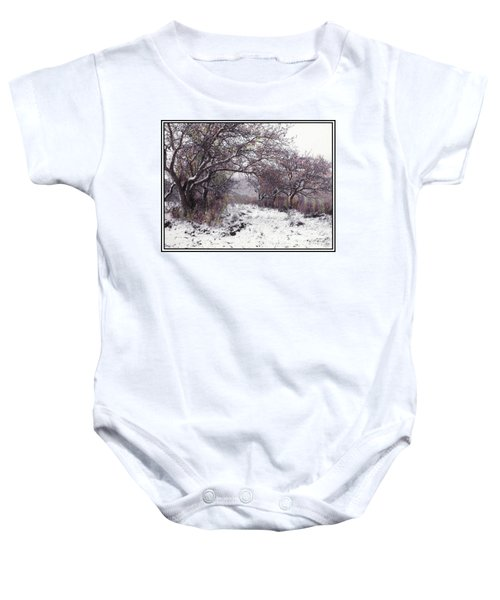 Apples Of The Asquamchumaukee Baby Onesie