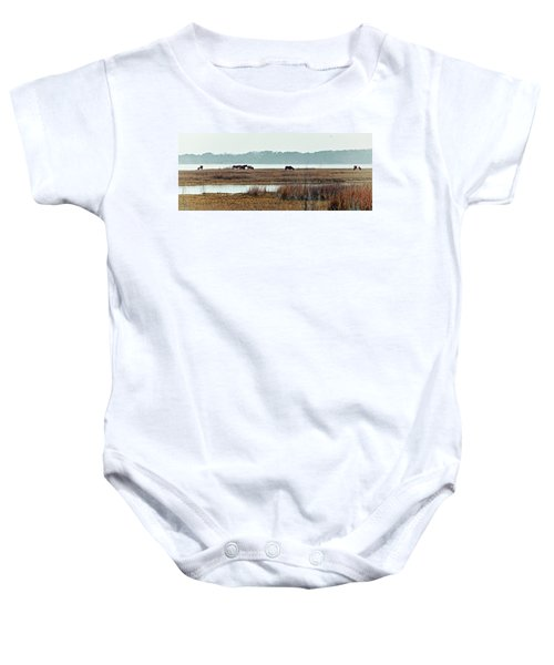 Band Of Wild Horses Along Sinepuxent Bay Baby Onesie