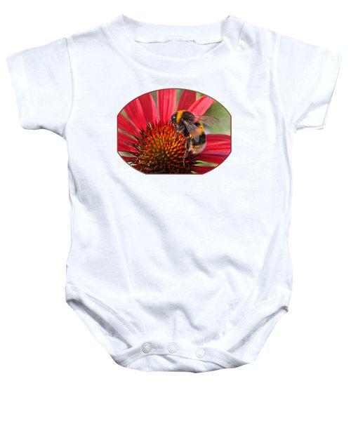 Bee On Red Coneflower 2 Baby Onesie