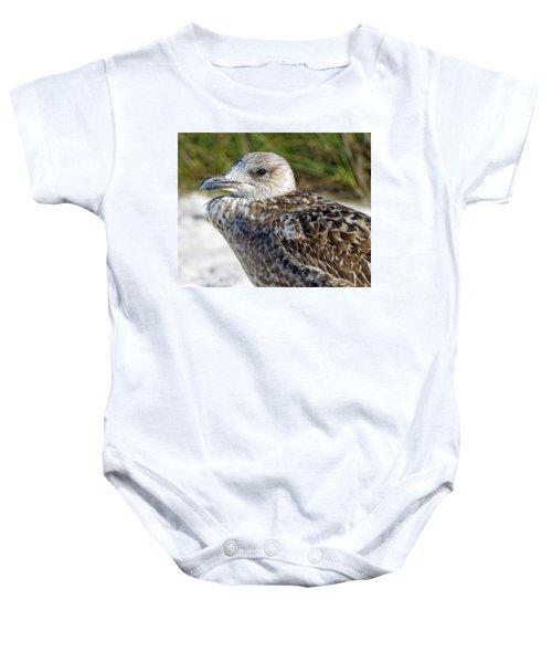 Brown Gull At Wiggins Pass Baby Onesie