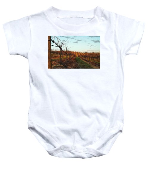 California Vineyard In Winter Baby Onesie