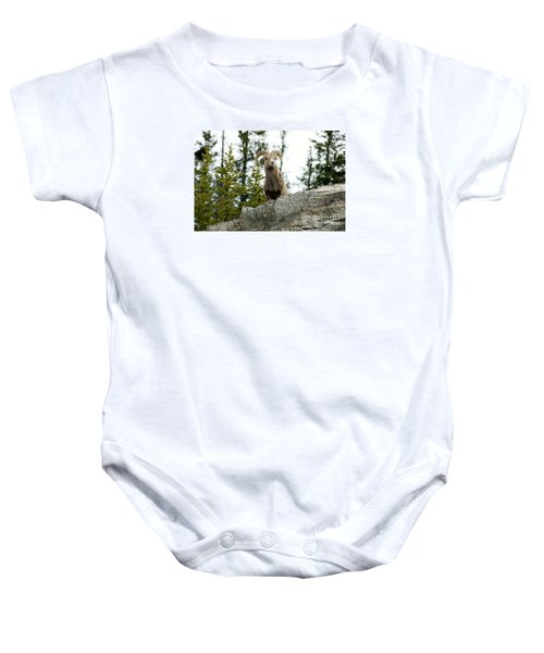 Canadian Bighorn Sheep Baby Onesie