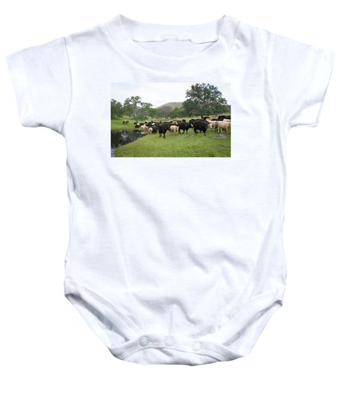 Cattle Baby Onesie
