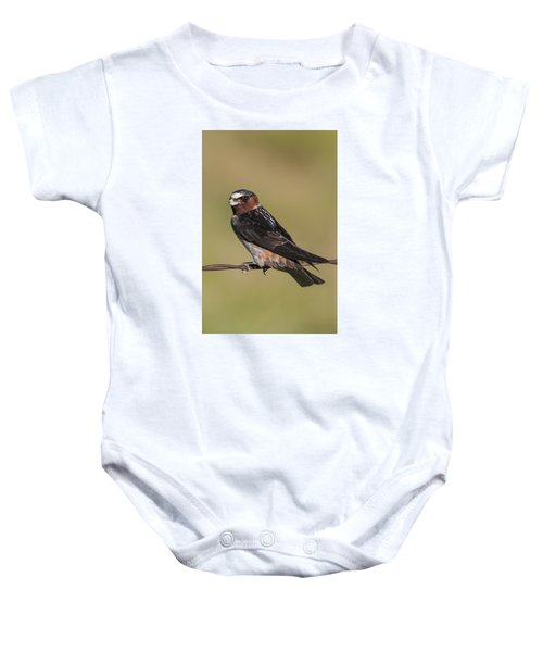 Baby Onesie featuring the photograph Cliff Swallow by Gary Lengyel