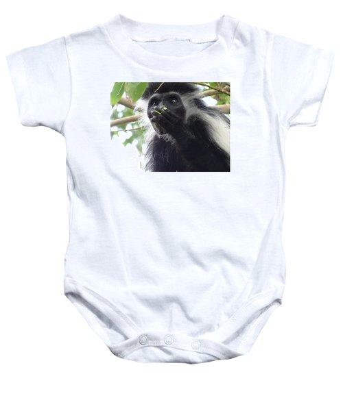 Colobus Monkey Eating Leaves In A Tree 2 Baby Onesie