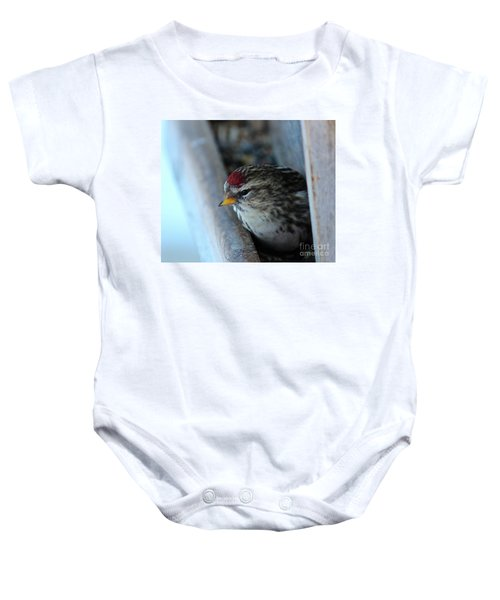 Common Redpoll Baby Onesie