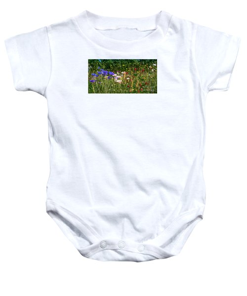 Country Wildflowers Iv Baby Onesie