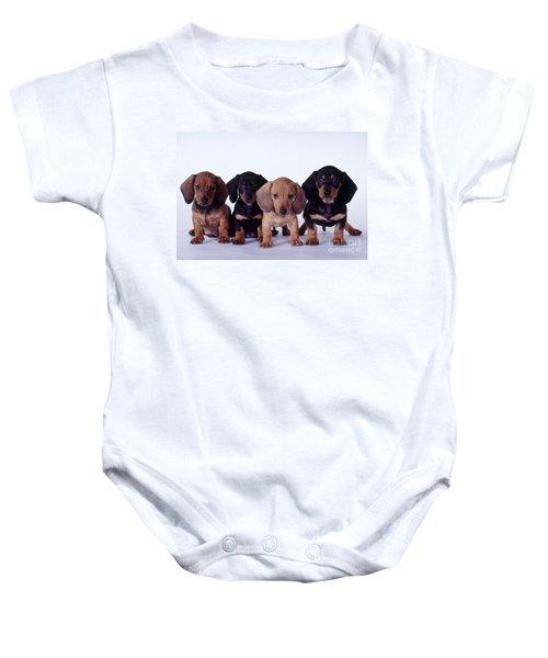 Dachshund Puppies  Baby Onesie