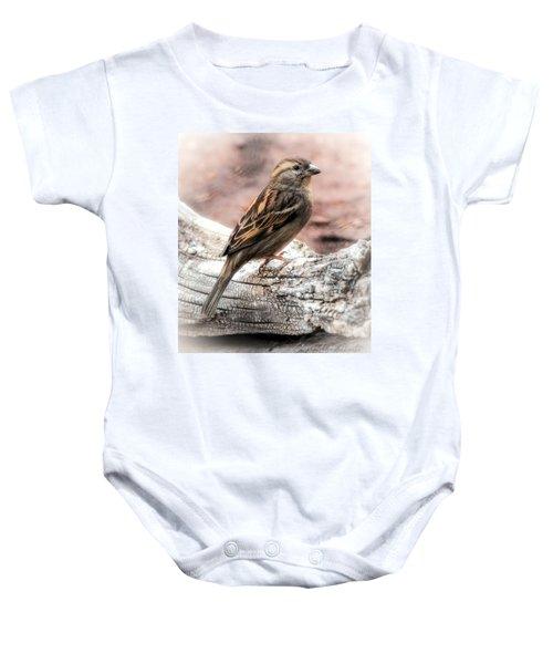 Female Sparrow Baby Onesie