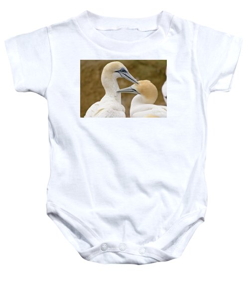 Baby Onesie featuring the photograph Gannet Pair 1 by Werner Padarin