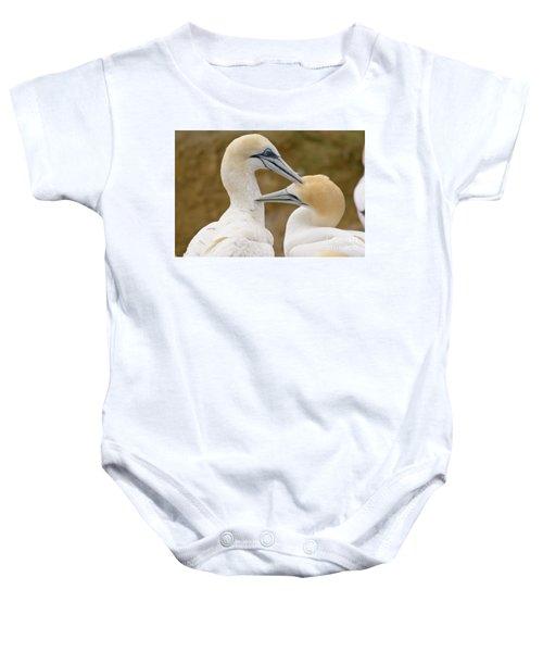 Gannet Pair 1 Baby Onesie