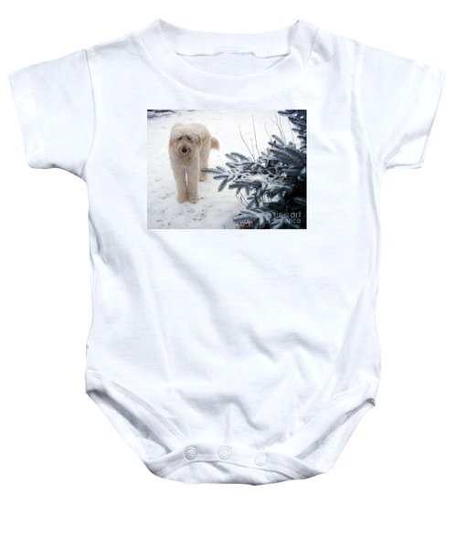 Goldendoodle Baby Onesie
