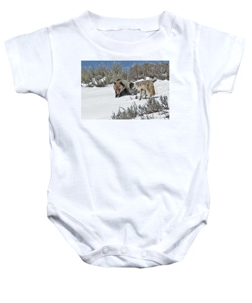 Grizzly With Coyote Baby Onesie