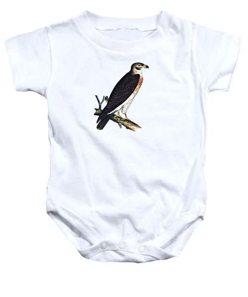 Hawk Swainsons Hawk Baby Onesie by Movie Poster Prints