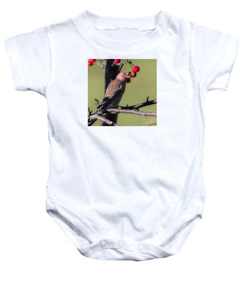 House Finch Vs Crabapple  Baby Onesie by Ricky L Jones