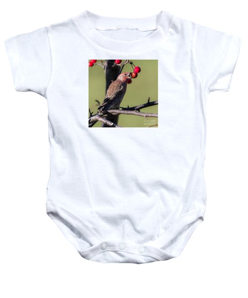 House Finch Vs Crabapple  Baby Onesie