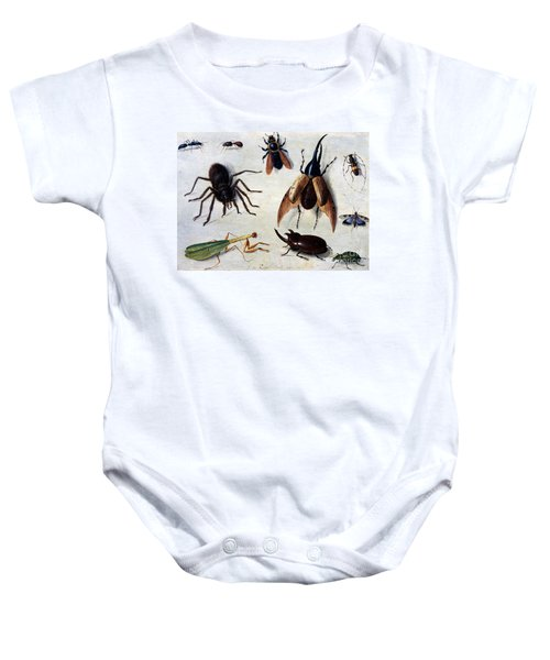 Insects, 1660 Baby Onesie
