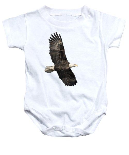 Isolated American Bald Eagle 2016-4 Baby Onesie