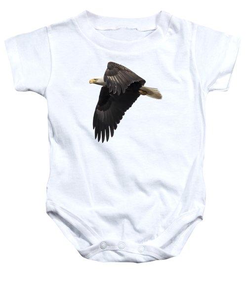 Isolated American Bald Eagle 2016-6 Baby Onesie