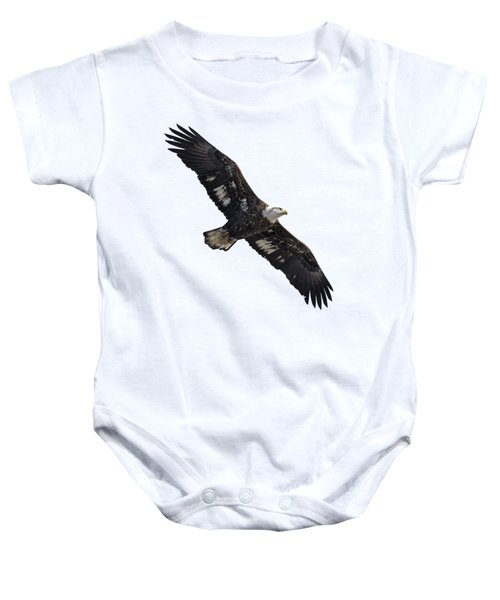 Isolated Juvenile American Bald Eagle 2016-1 Baby Onesie