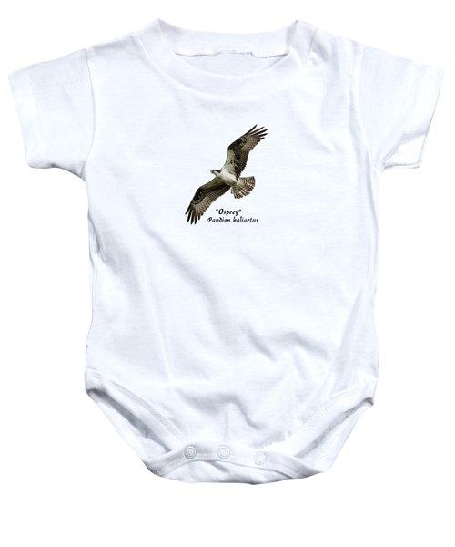 Isolated Osprey 2017-1 Baby Onesie