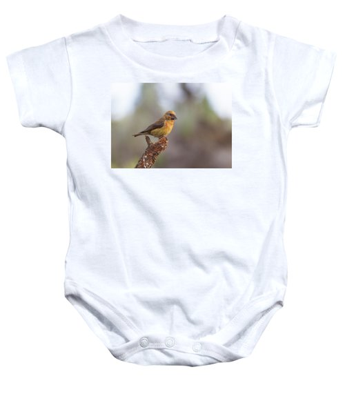 Juvenile Male Red Crossbill Baby Onesie by Doug Lloyd