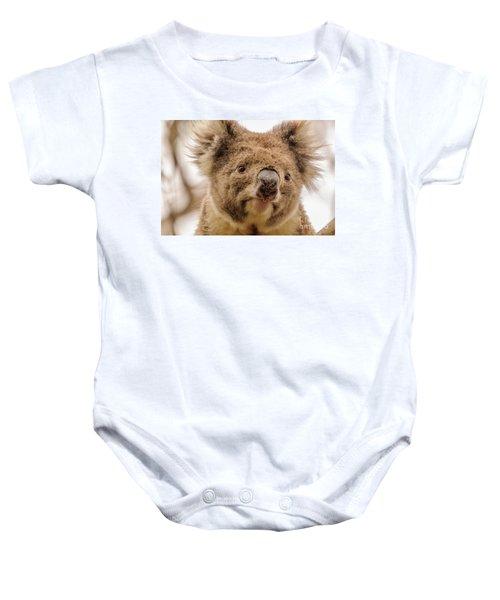 Koala 4 Baby Onesie by Werner Padarin