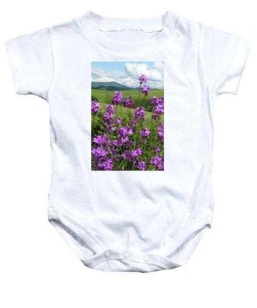 Landscape With Purple Flowers In Virginia Baby Onesie