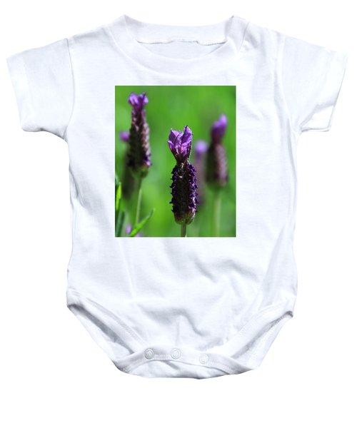 Lavender Spike Baby Onesie
