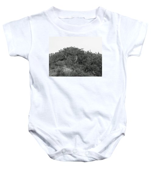 Lesser Horned Owl Baby Onesie by Sandy Taylor
