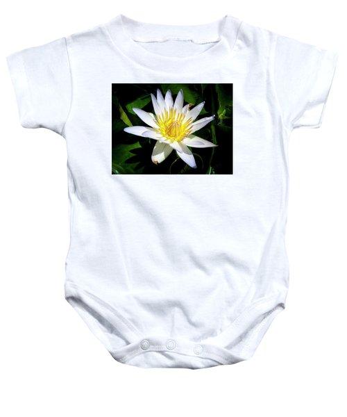Lily Baby Onesie