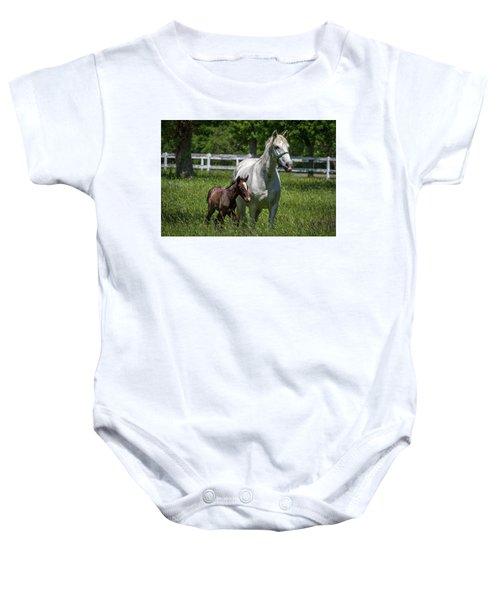 Lipizzan Horses Baby Onesie
