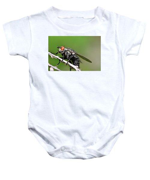 Macro Fly Baby Onesie