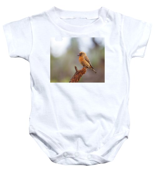 Male Red Crossbill Baby Onesie by Doug Lloyd