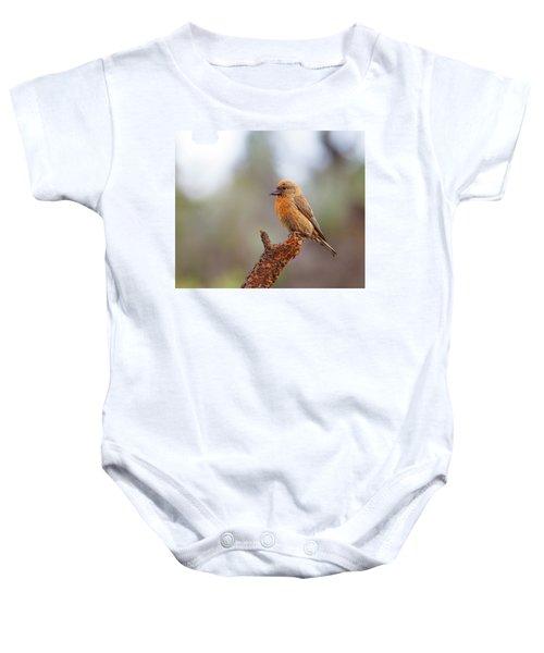 Male Red Crossbill Baby Onesie