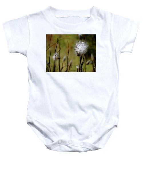 Milkweed In A Field Baby Onesie