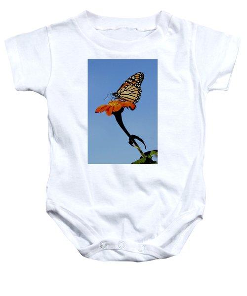 Monarch On Zinnia  Baby Onesie