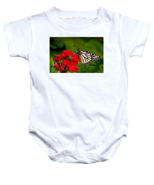 Monarh Butterfly Baby Onesie